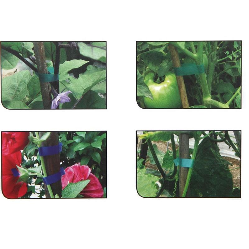 Aparat de legat vita de vie, rosii, plante