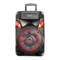 Boxa portabila karaoke Zephyr, 300 W, 4 Ohm, Bluetooth, 12 inch