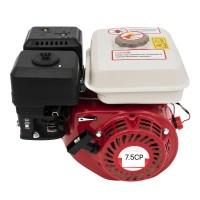Motor benzina Campion, 7.5 CP OHV, ax 20 mm, 4 timpi, rezervor 3.6 l, ax orizontal