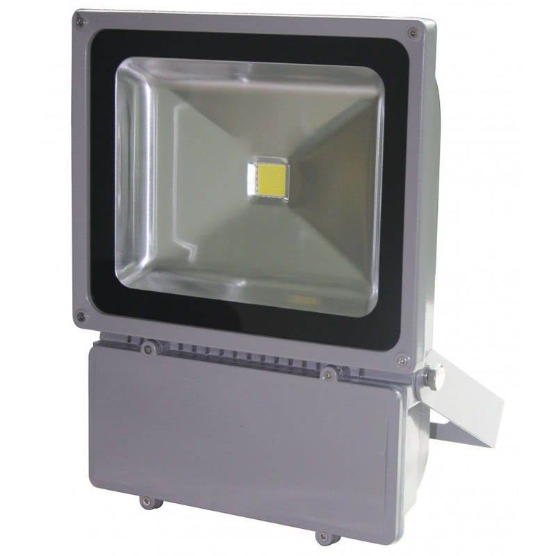 Proiector cu LED, 100 W, ECO LED, Gri shopu.ro