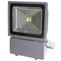 Proiector cu LED, 100 W, ECO LED, Gri