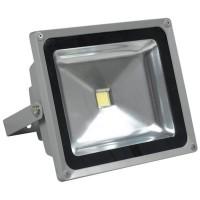 Proiector cu LED, 30 W, ECO LED, Gri