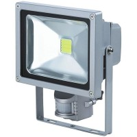 Proiector cu LED 30W, ECO LED, senzor de miscare
