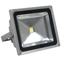 Proiector cu LED, 50 W, ECO LED, Gri