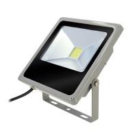 Proiector slim cu LED, 50 W, ECO LED, Gri