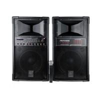 Set 2 boxe profesionale DS-2022 Vlliodor, 2 x 80 W, bluetooth, USB, microfon inclus