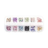 Cutie strasuri pentru unghii CD017, 12 compartimente