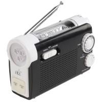Radio FM Torch HQ, 100 W, 5 mufe telefon