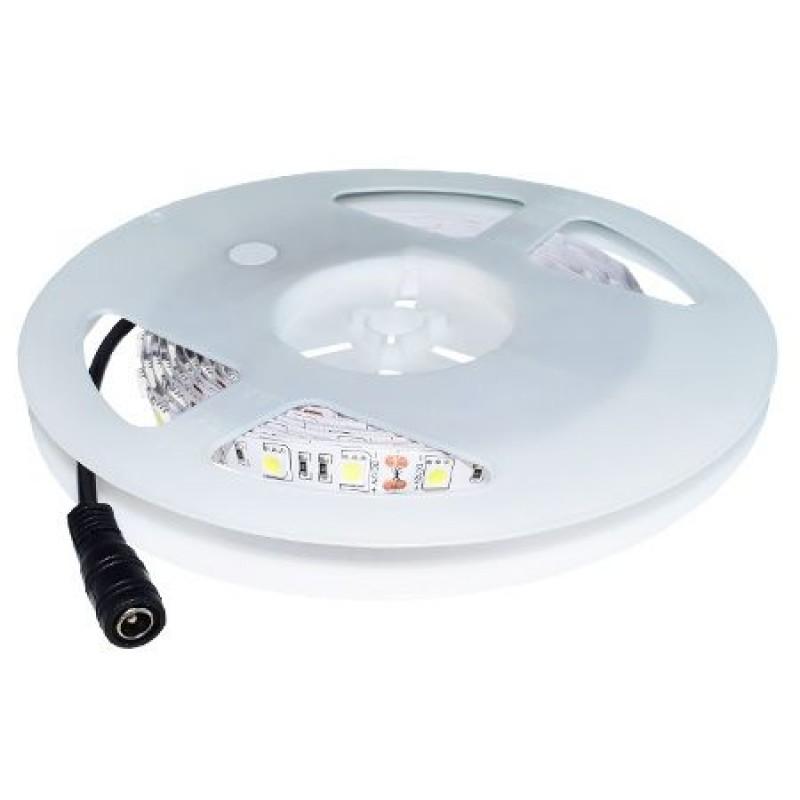 Banda LED, 60 led-uri smd/m, 6000 K, alb rece, lungime 5 m