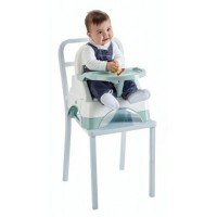 Scaun evolutiv de masa Edgar 3 in 1 Thermobaby, 40 x 31 cm, PVC, maxim 15 kg, 6 luni+, model celadon green