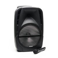 Boxa portabila Karaoke Freeman, 25 W, 2 x 2200 mAh, USB, AUX, bluetooth, raza actiune 10 m, microfon inclus, Negru