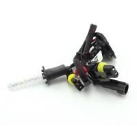 Bec xenon Carguard, 35 W, 3500 lm, 12 V, soclu H1