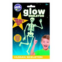 Schelet uman fosforescent The Original Glowstars Company, 3 ani+