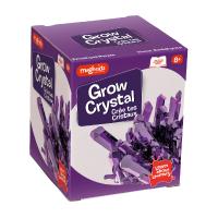 Set de joaca experimente Creeaza Cristale Magnoidz Keycraft, 8 ani+, Mov
