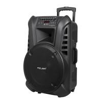 Sistem audio portabil, radio FM, USB, bluetooth, microfon wireless, karaoke