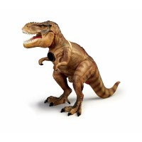 T Rex Proiector si Paznic Brainstorm Toys, 24 imagini, Multicolor